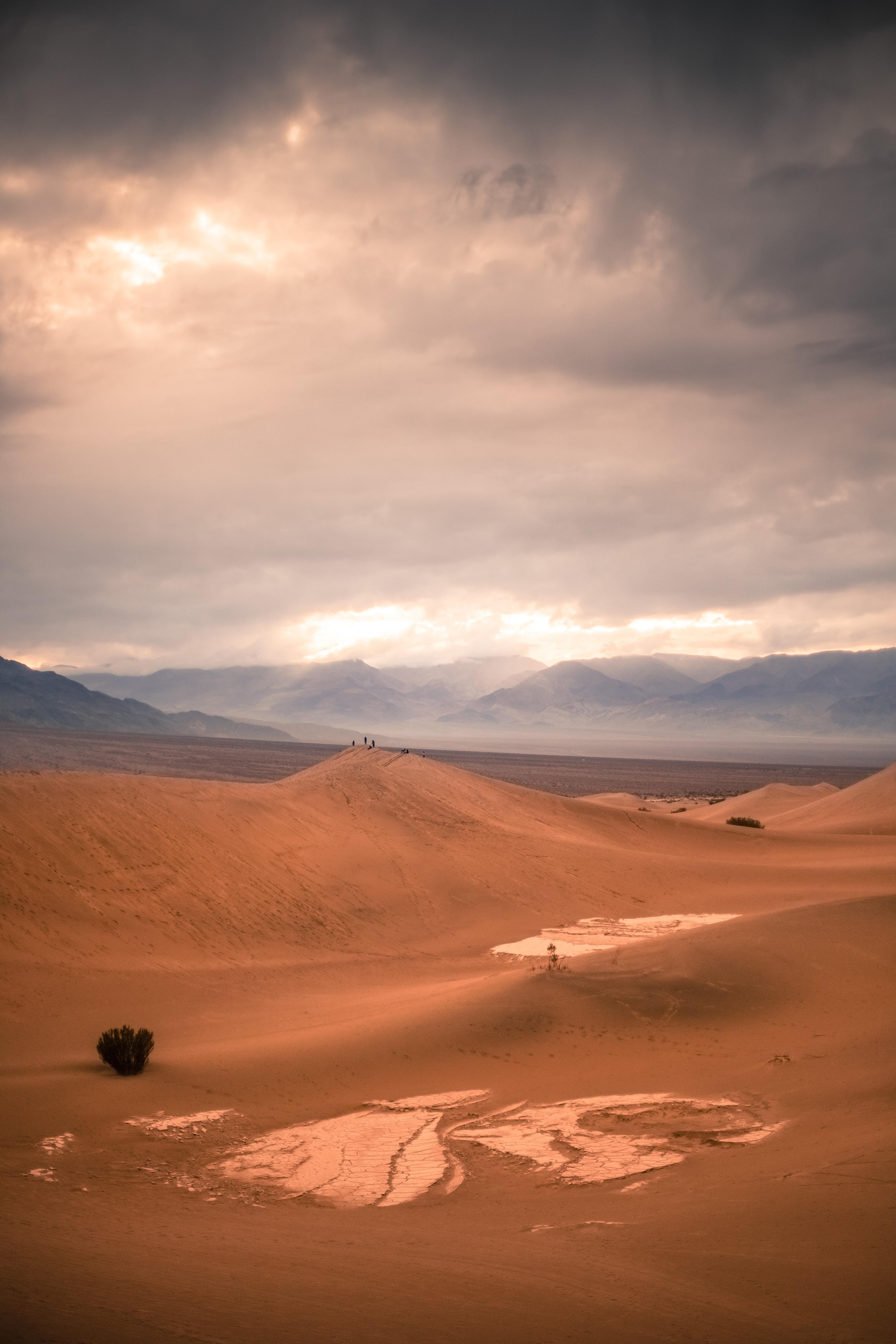orange desert under gray cloudy sky at day