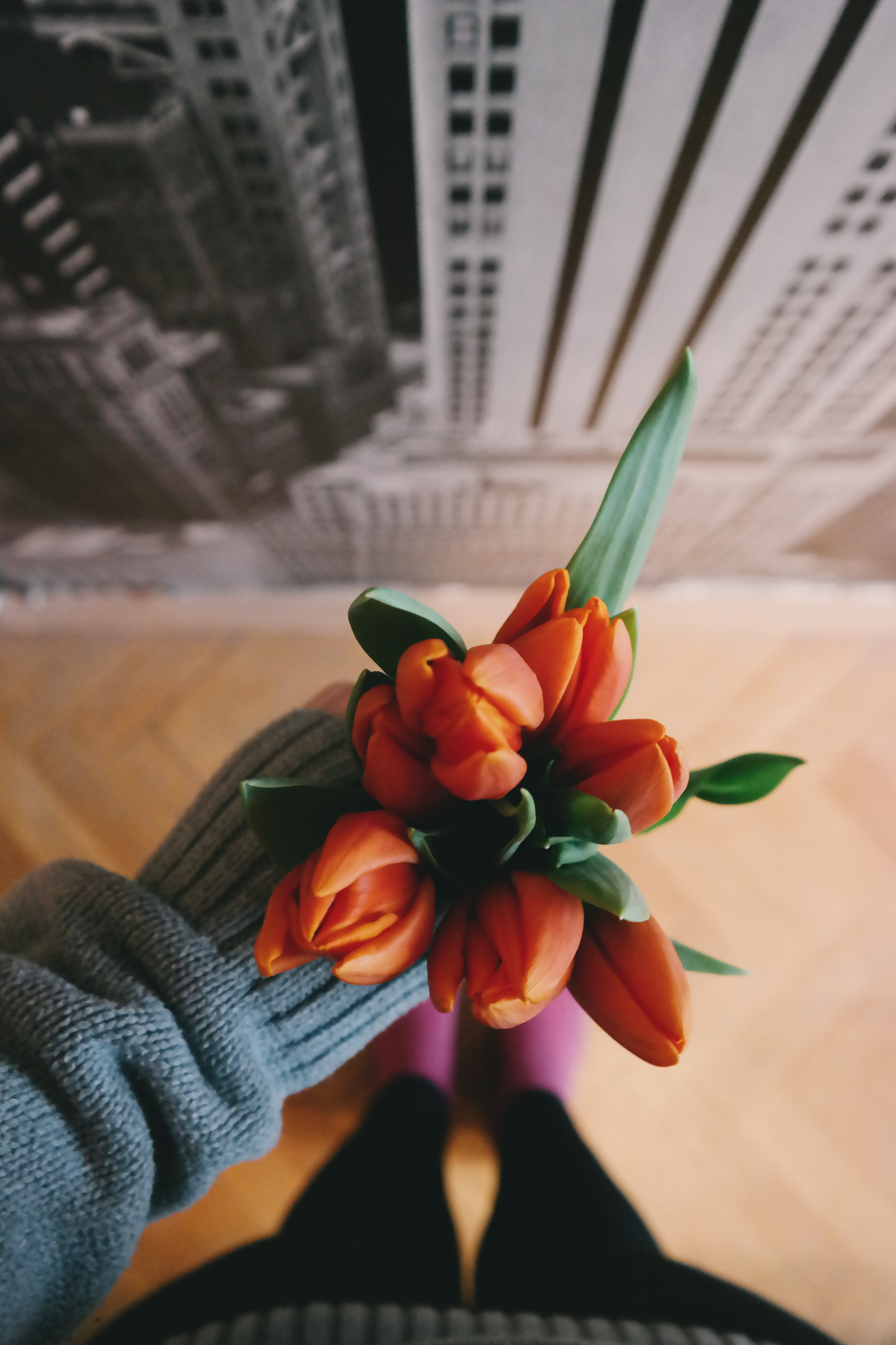 An overhead shot of a person's hand holding a bouquet of orange tulips