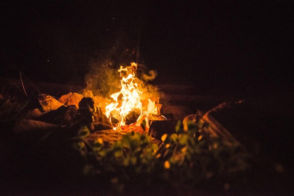photo of orange fire