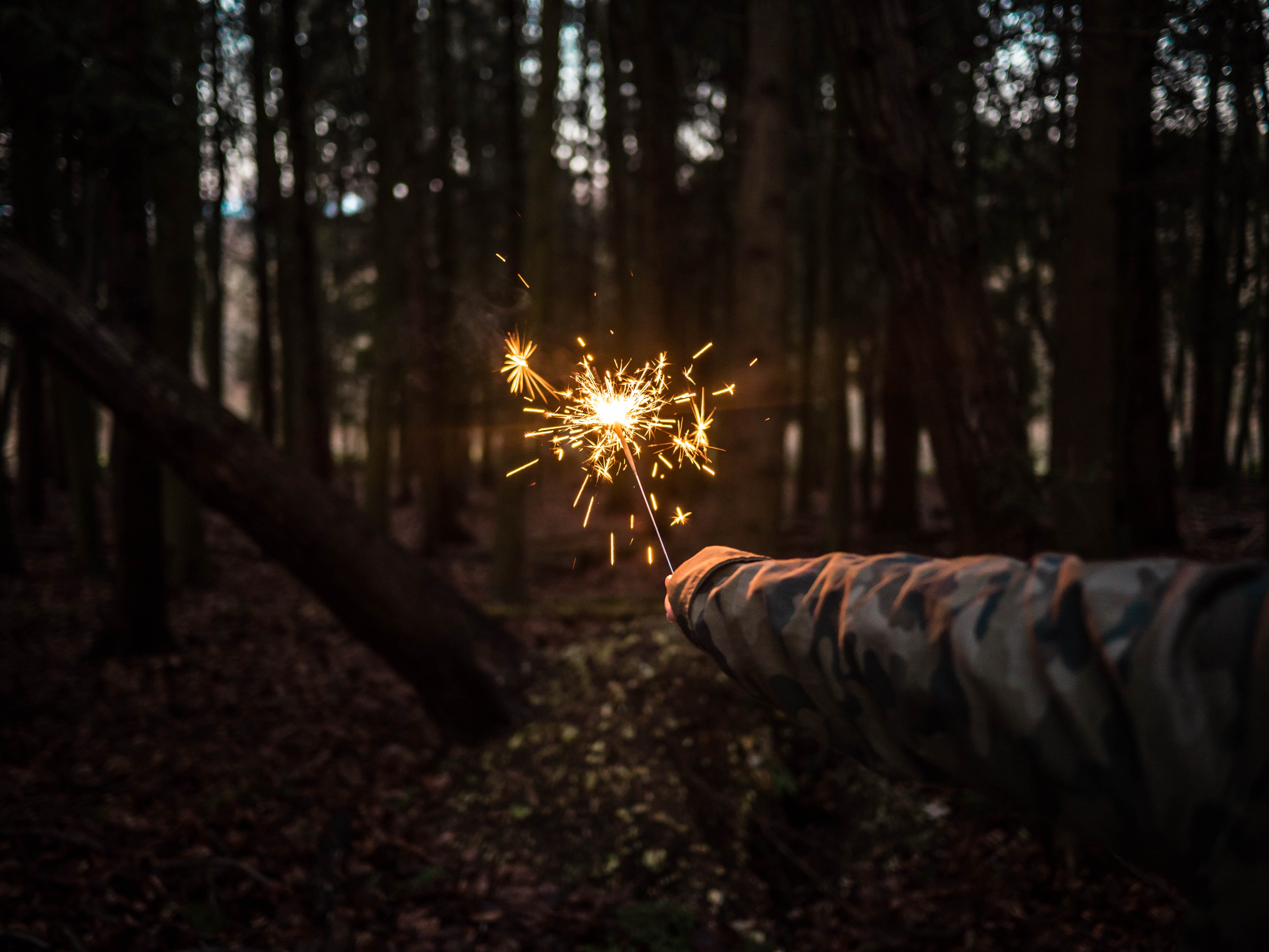 person holding sparkler at the middle of forest