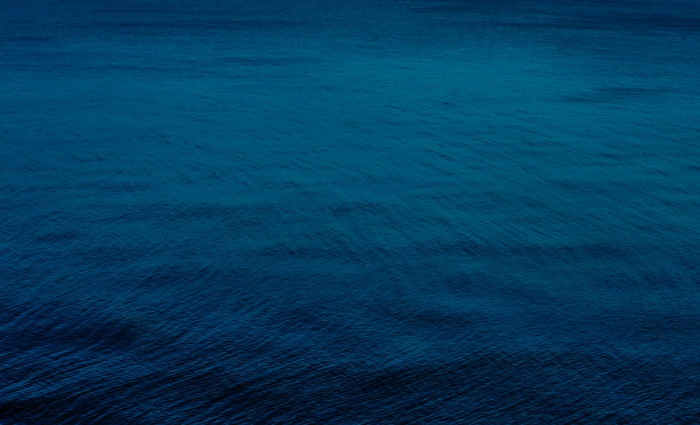 Best Blue Sea Pictures Hd Download Free Images On Unsplash