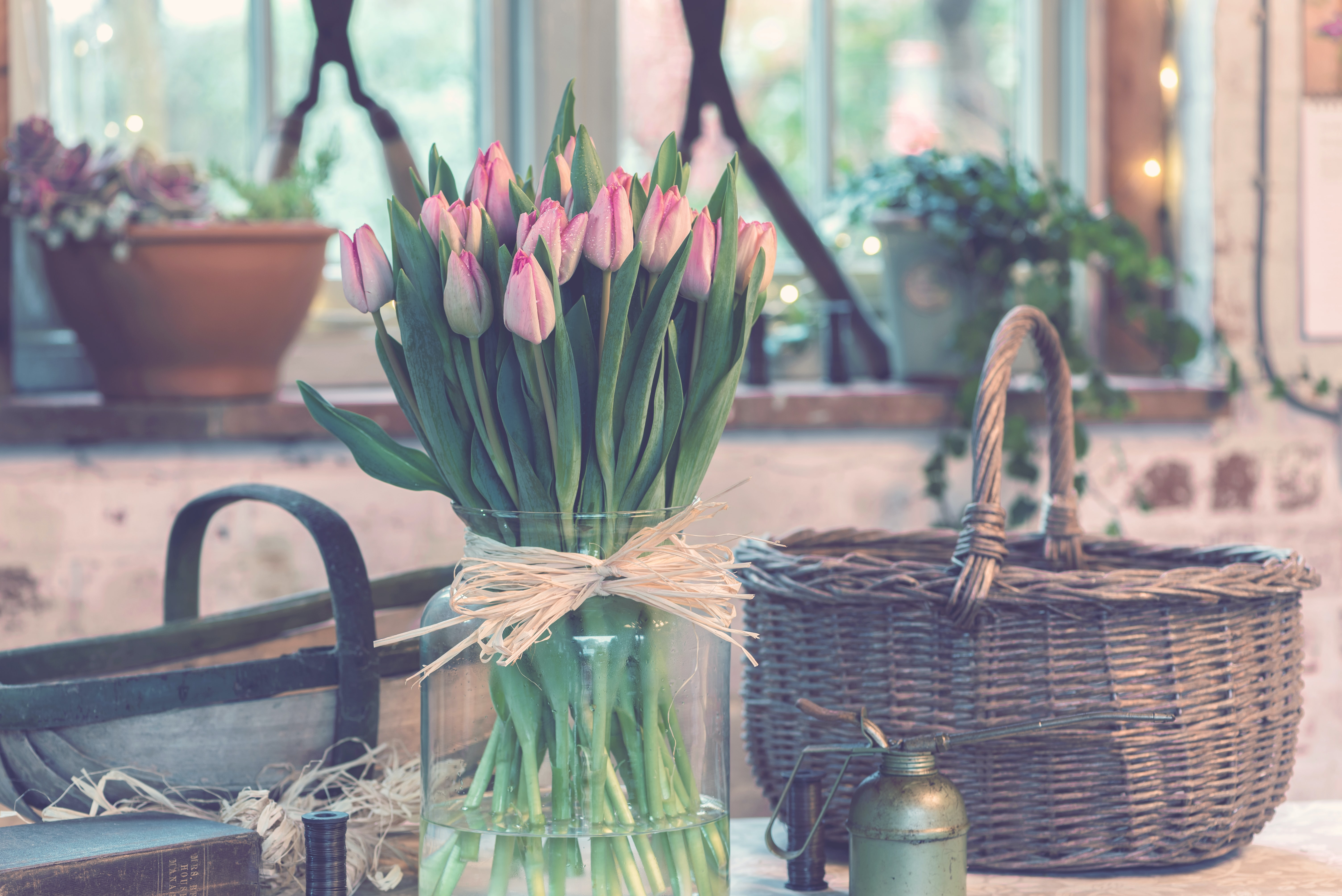 A large glass vase filled with pink tulips next to a wicker basket