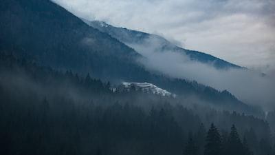 1273. Ködös tájakon