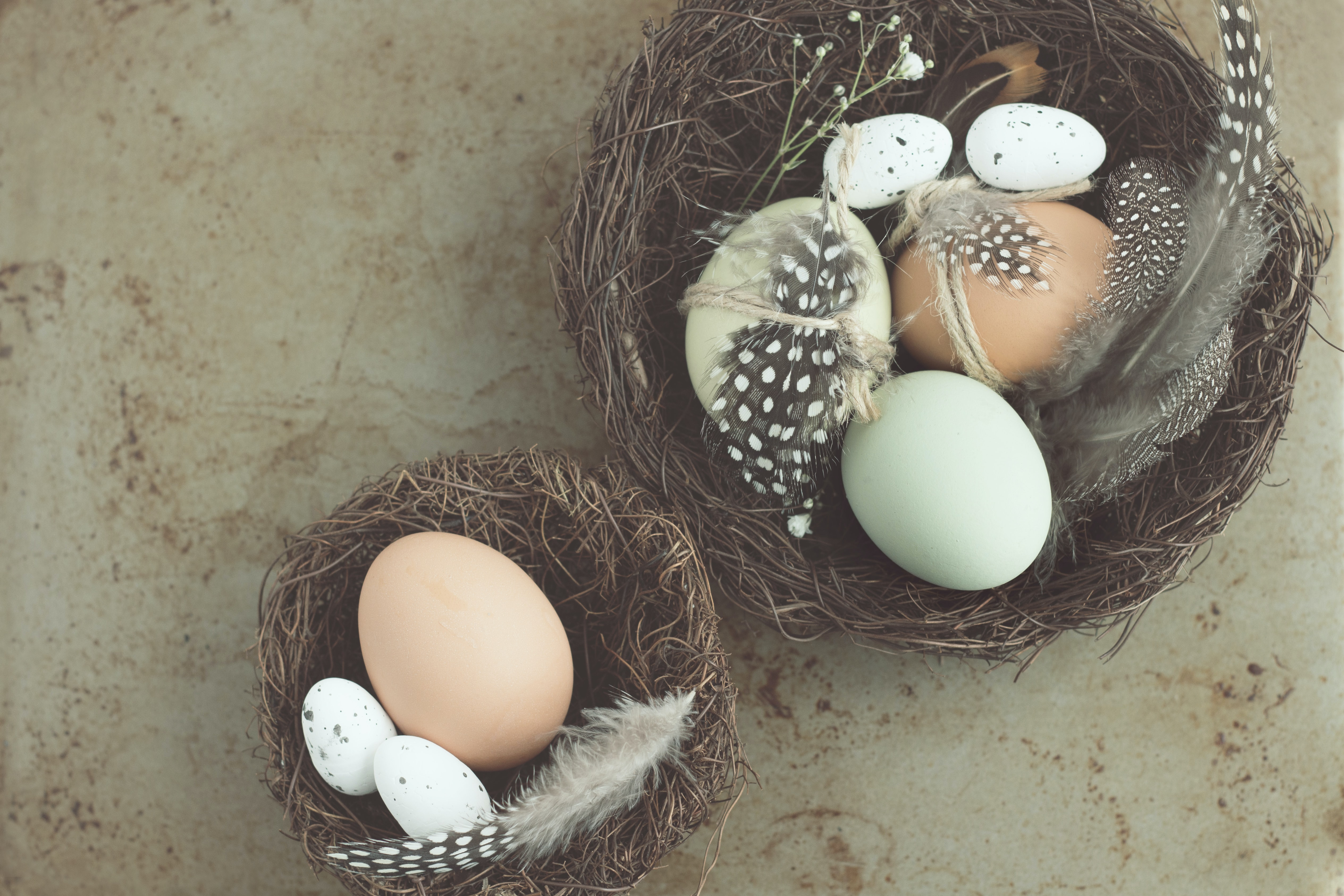 A large and small nest Easter basket with eggs and feathers in each