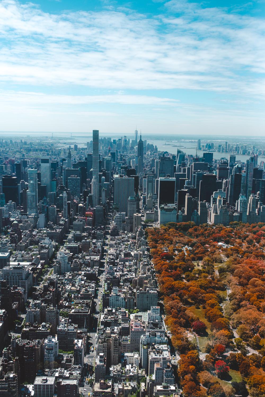 birdseye photo of city