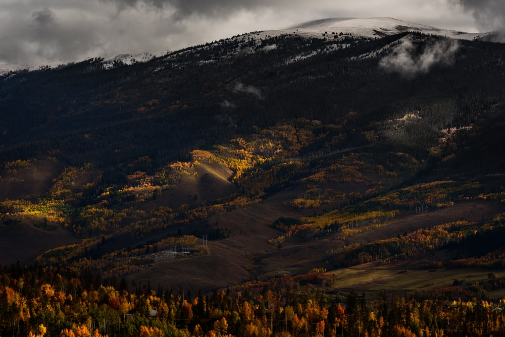 photo of red and green trees near black and white mountain under cloudy sky