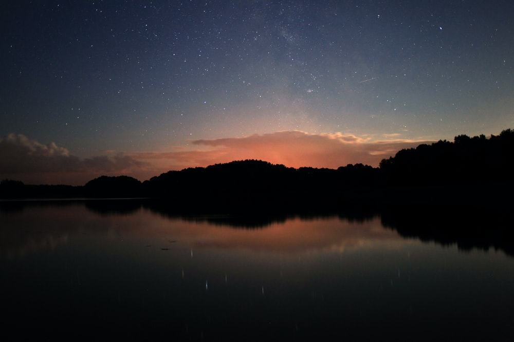 reflection photo of trees
