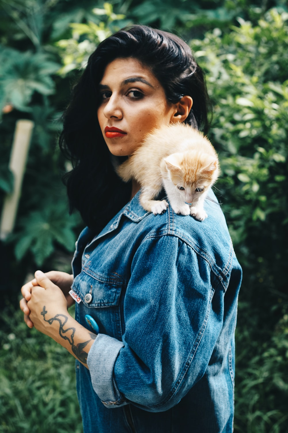 orange kitten on woman's shoulder during daytime