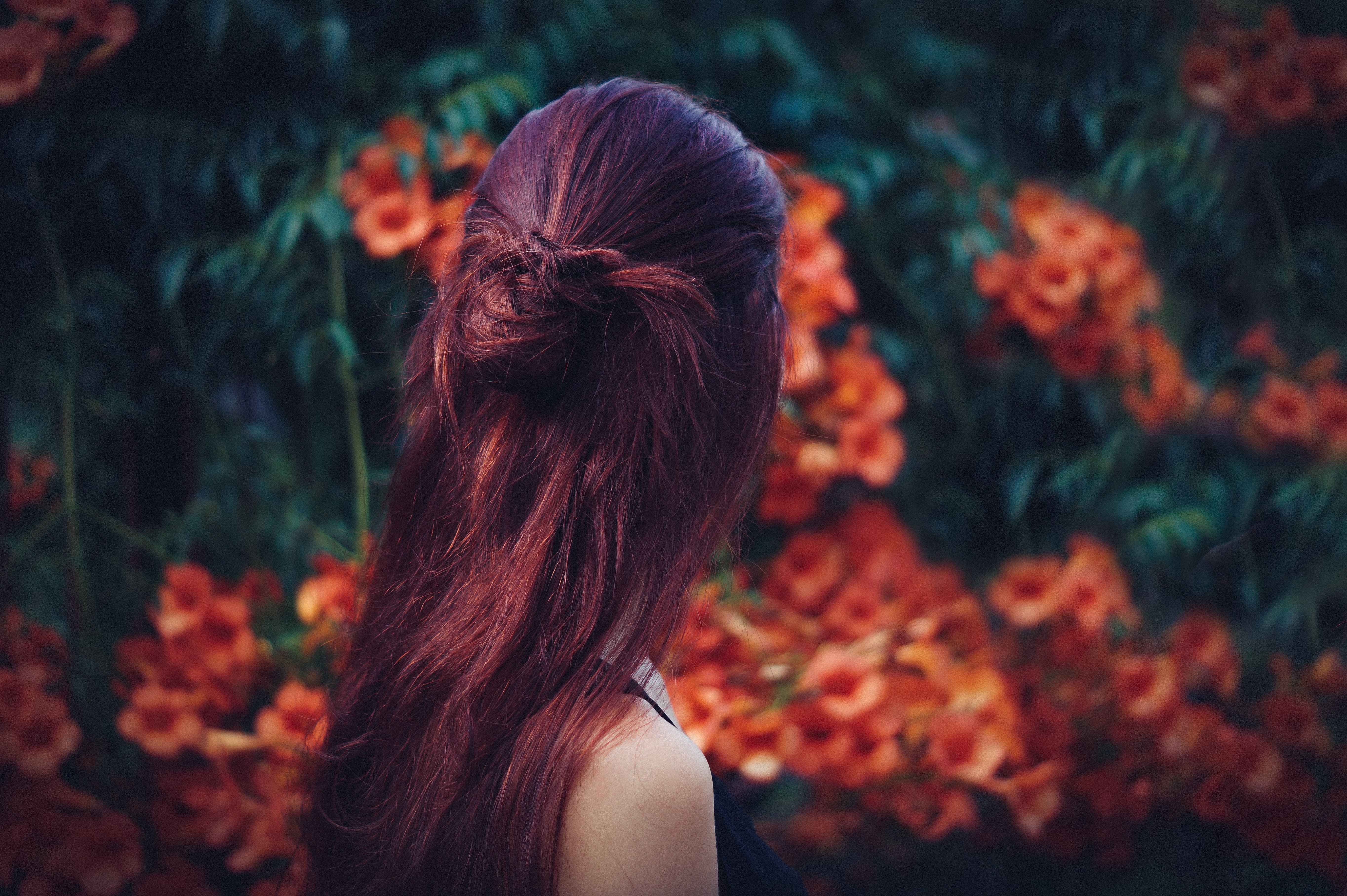 The back of the head of a dark-haired woman in a garden full of red flowers