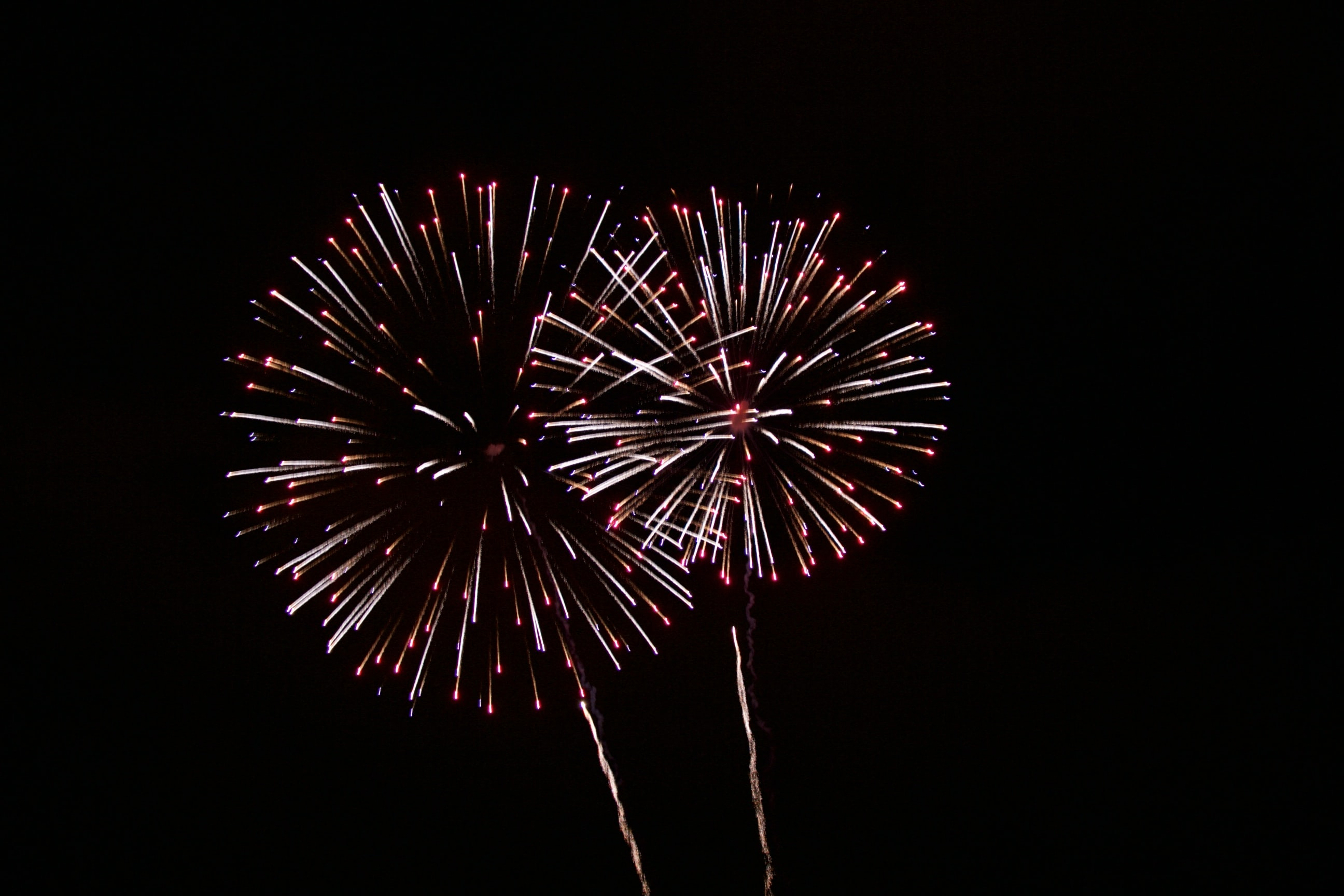 fireworks display photo