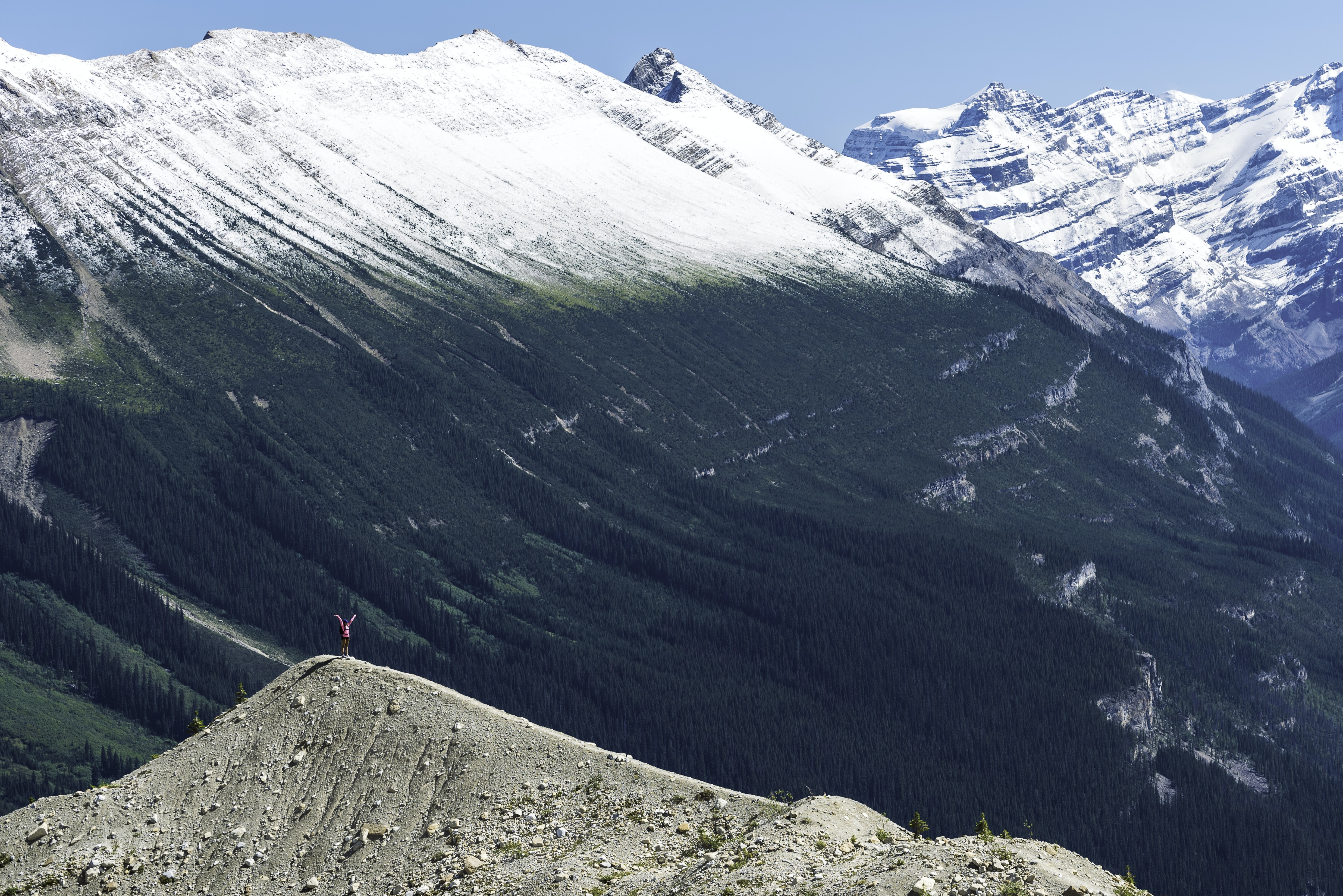 Mountain range half covered in snow and half by green plants in Yoho National Park