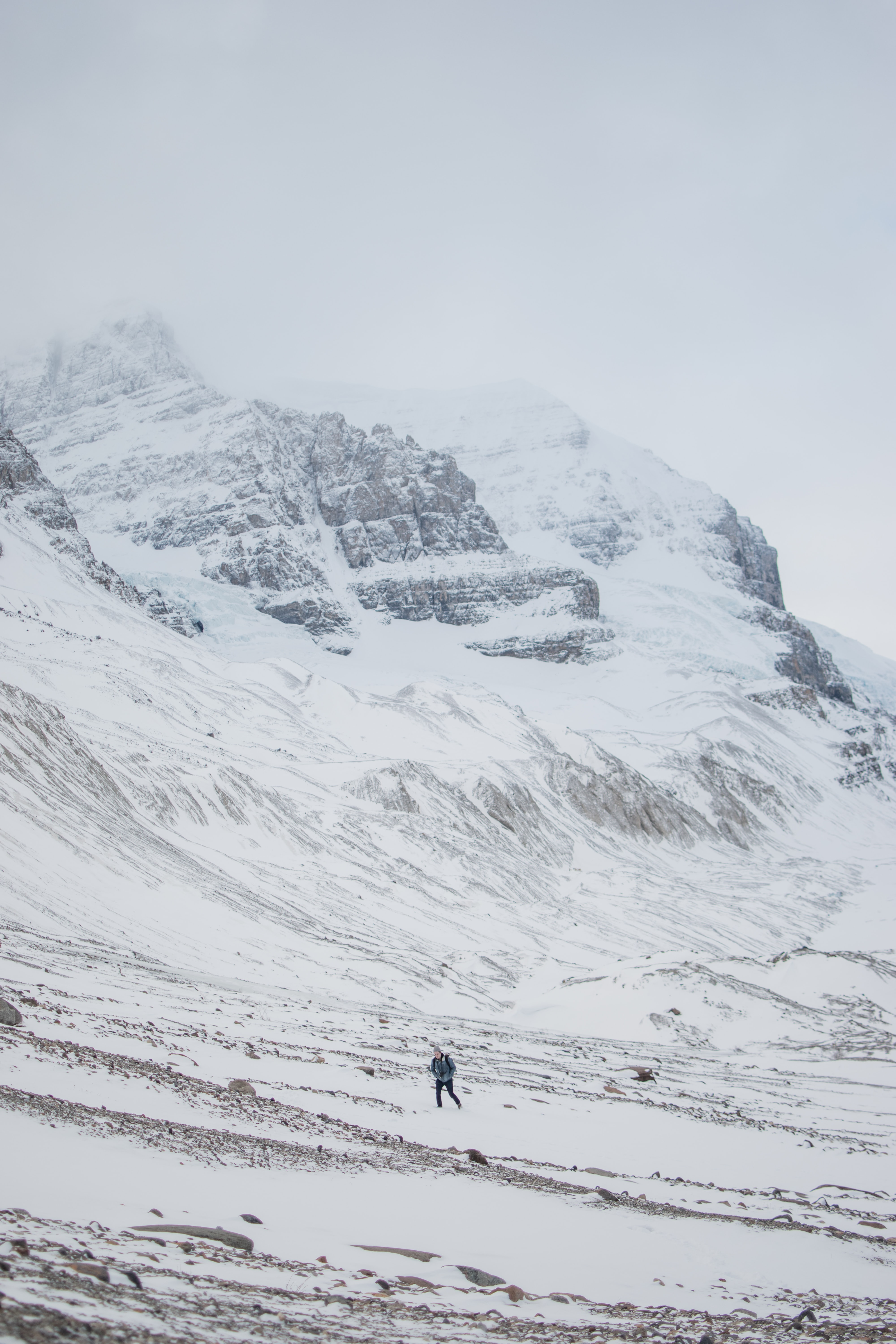 Hiker in dark colors walks at the base of the snowy, icy Athabasca Glacier