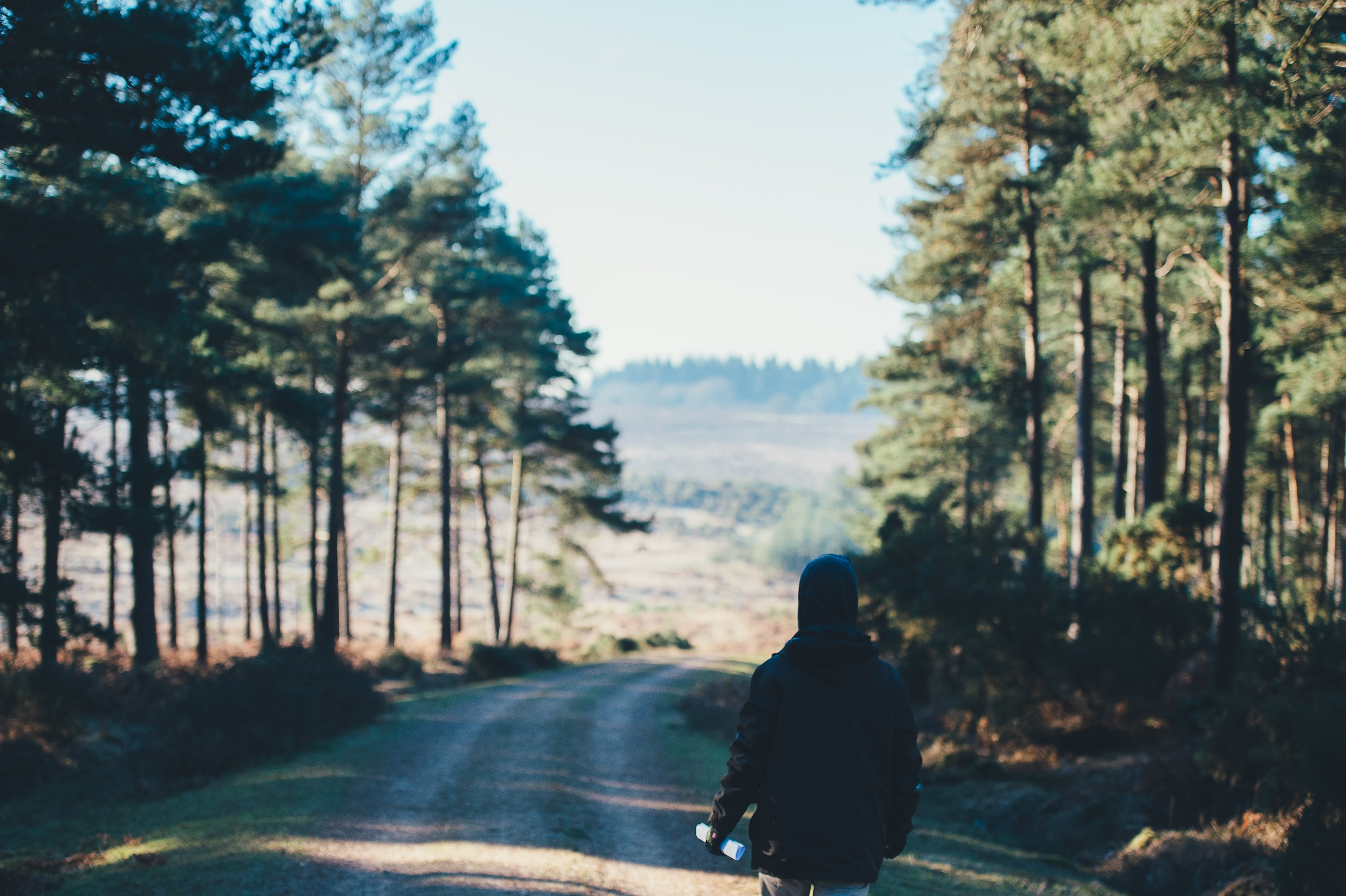 A person walking down a road in the New Forest National Park