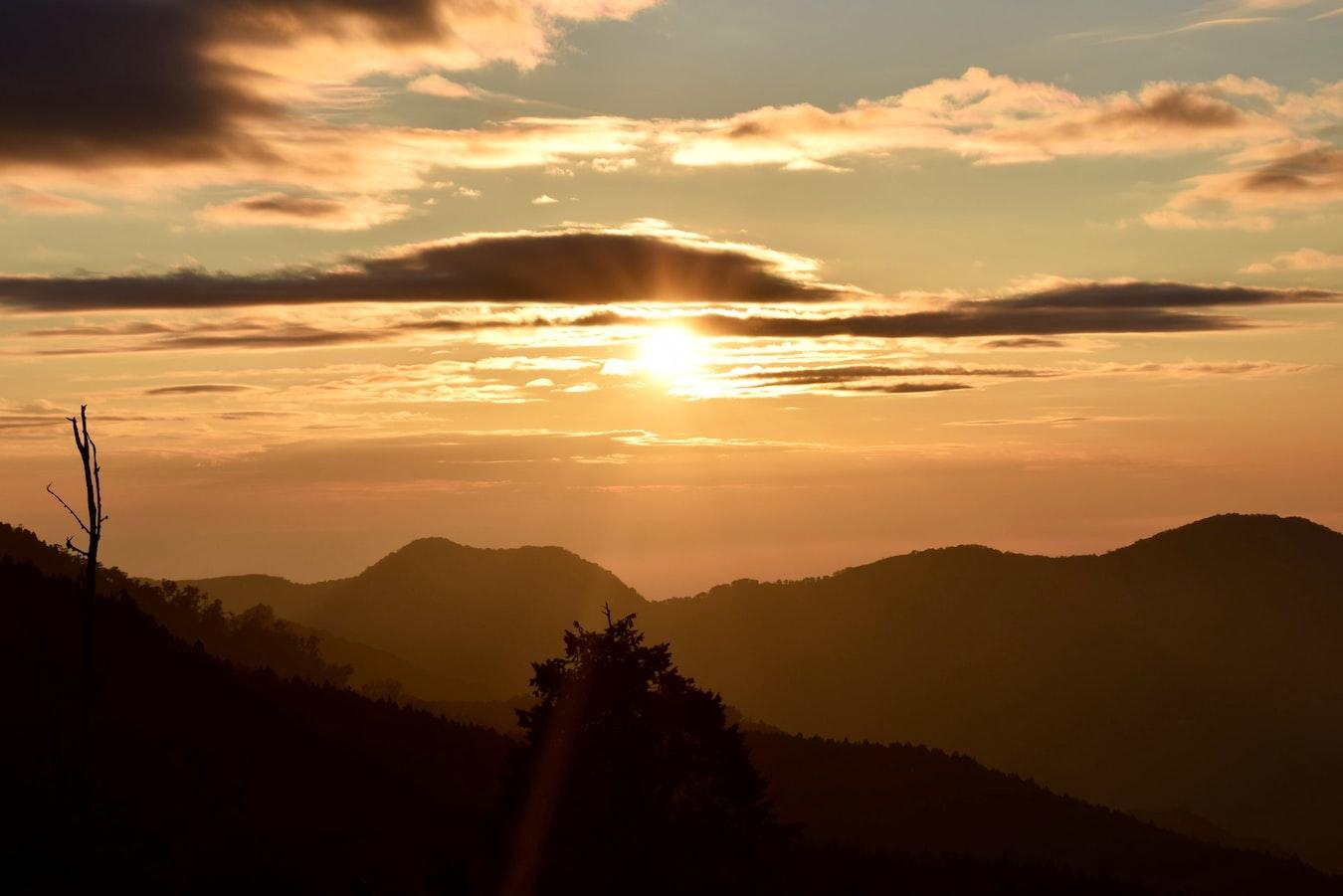 阿里山2020新玩法!失落仙境「眠月線」拍照景點、交通資訊整理