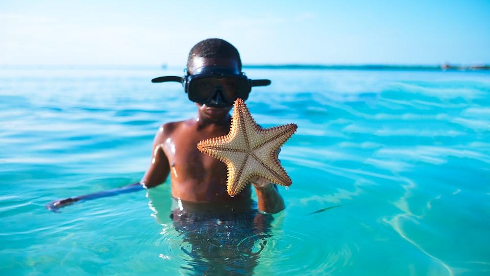 man carrying star fish