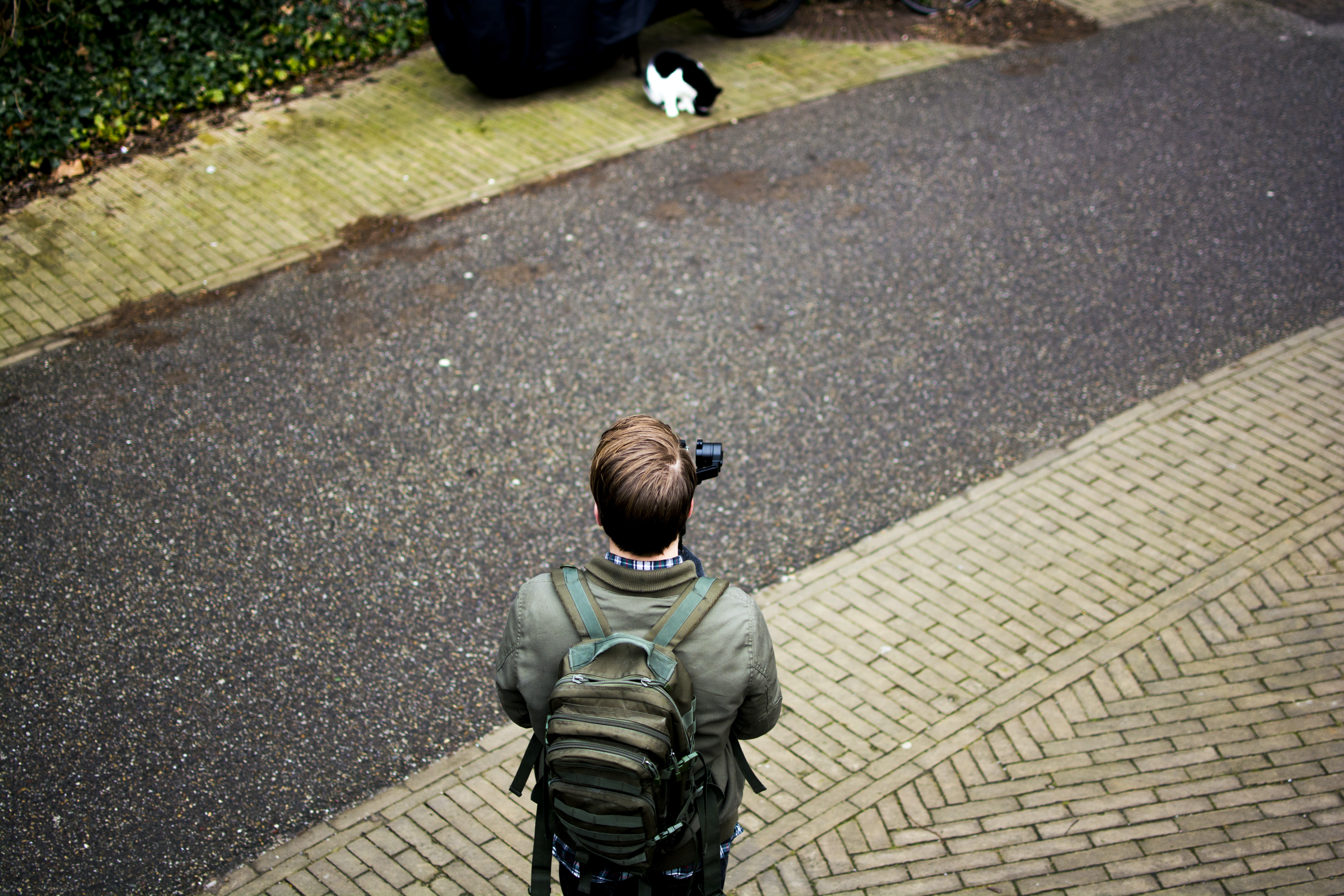 A man in a backpack holds a camera by a pathway in front of a cat