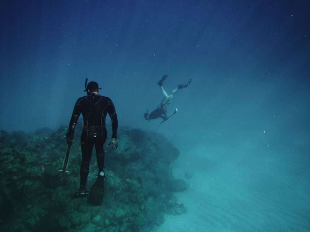 men freediving on coral reefs