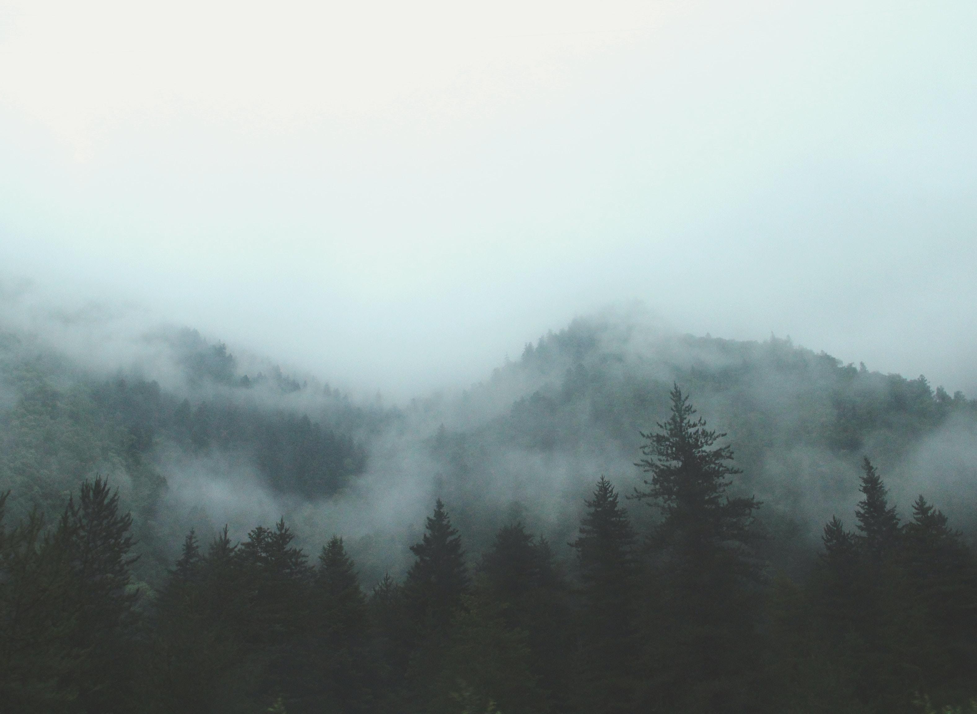 Mist over wooded hills in Jiuzhai Valley National Park