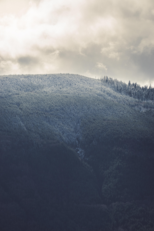 A tall wooded hill under an overcast sky
