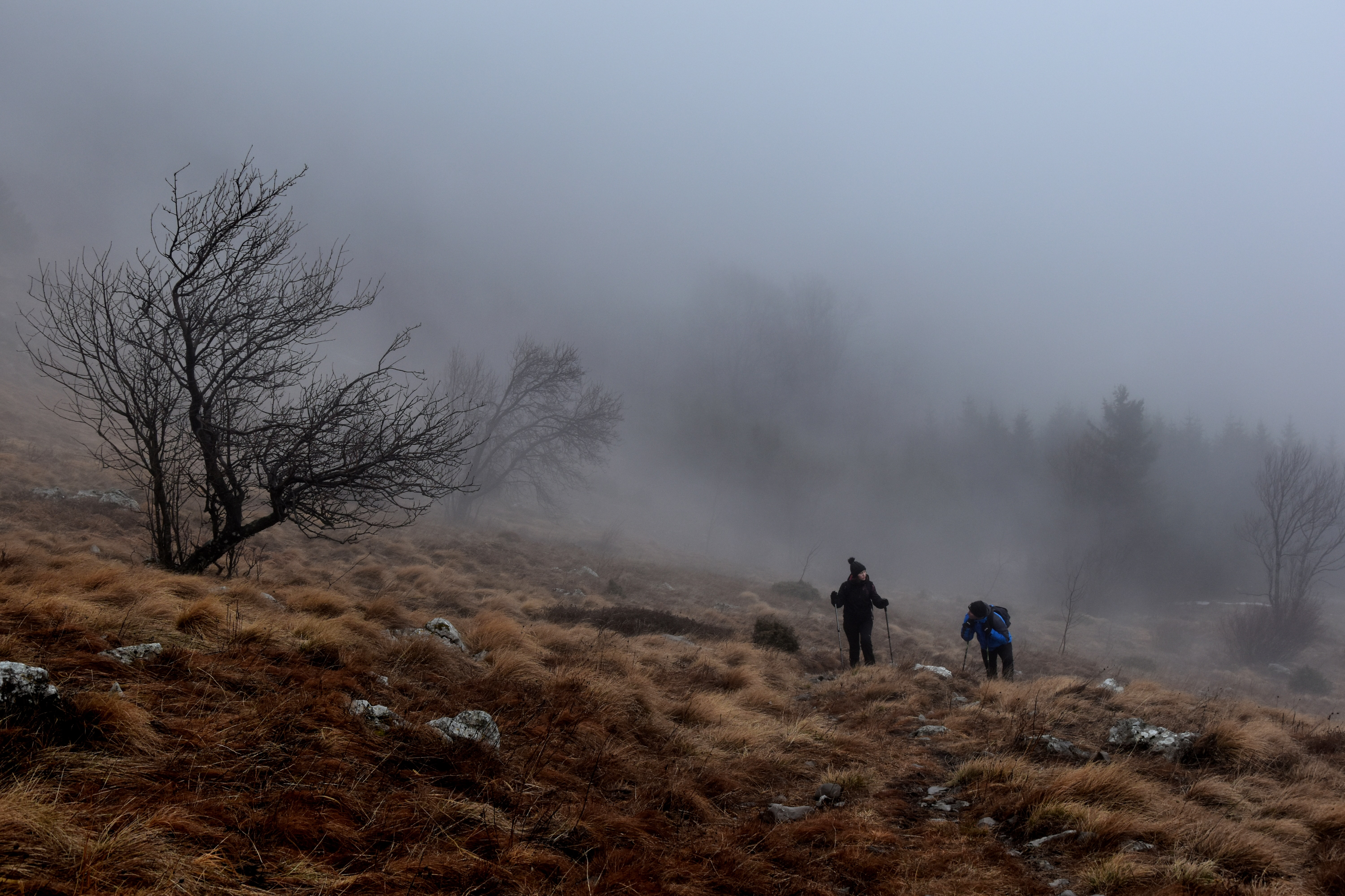 People hike over hills on a foggy, winter walk