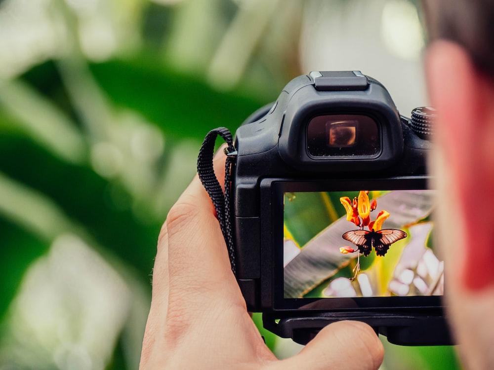 black digital camera capturing yellow flower