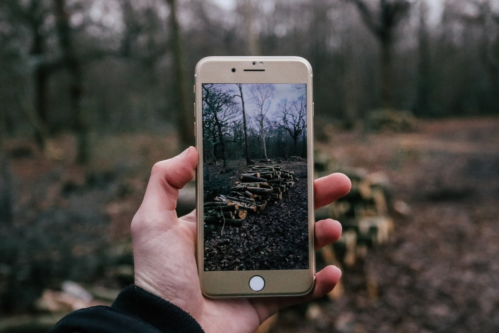 person taking a photo of firewoods using iPhone
