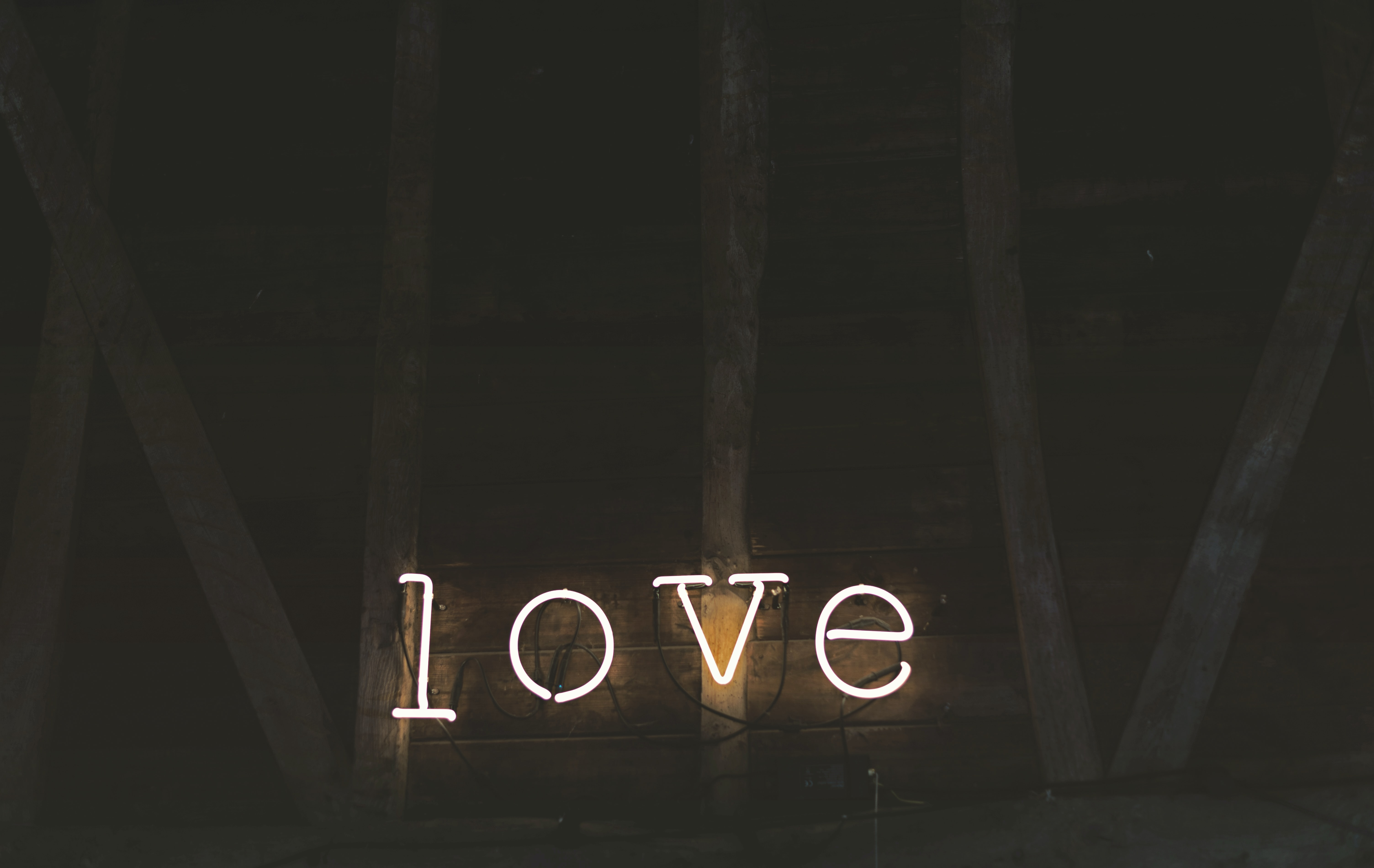 Neon lights spell out love against a wooden barn wall