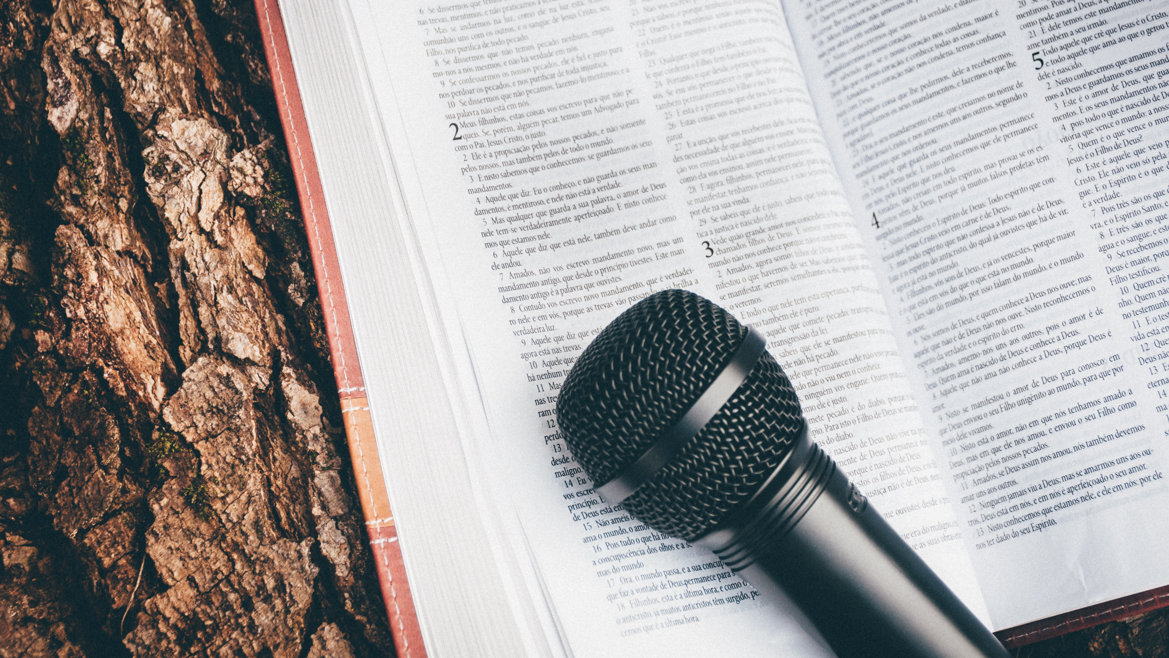 A microphone and bible resting on a tree stump