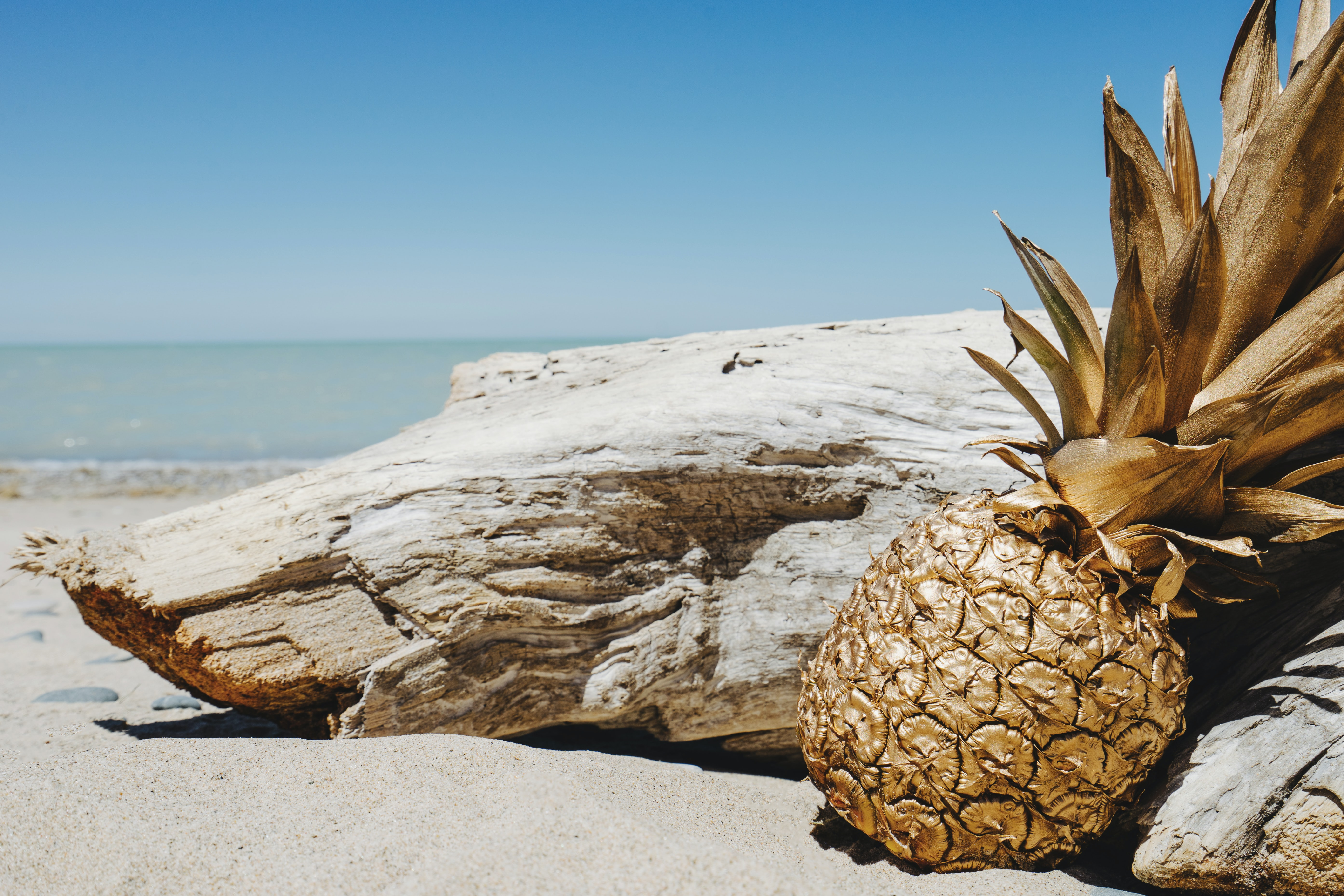 A gold-painted pineapple leaning against a piece of driftwood on a sandy beach