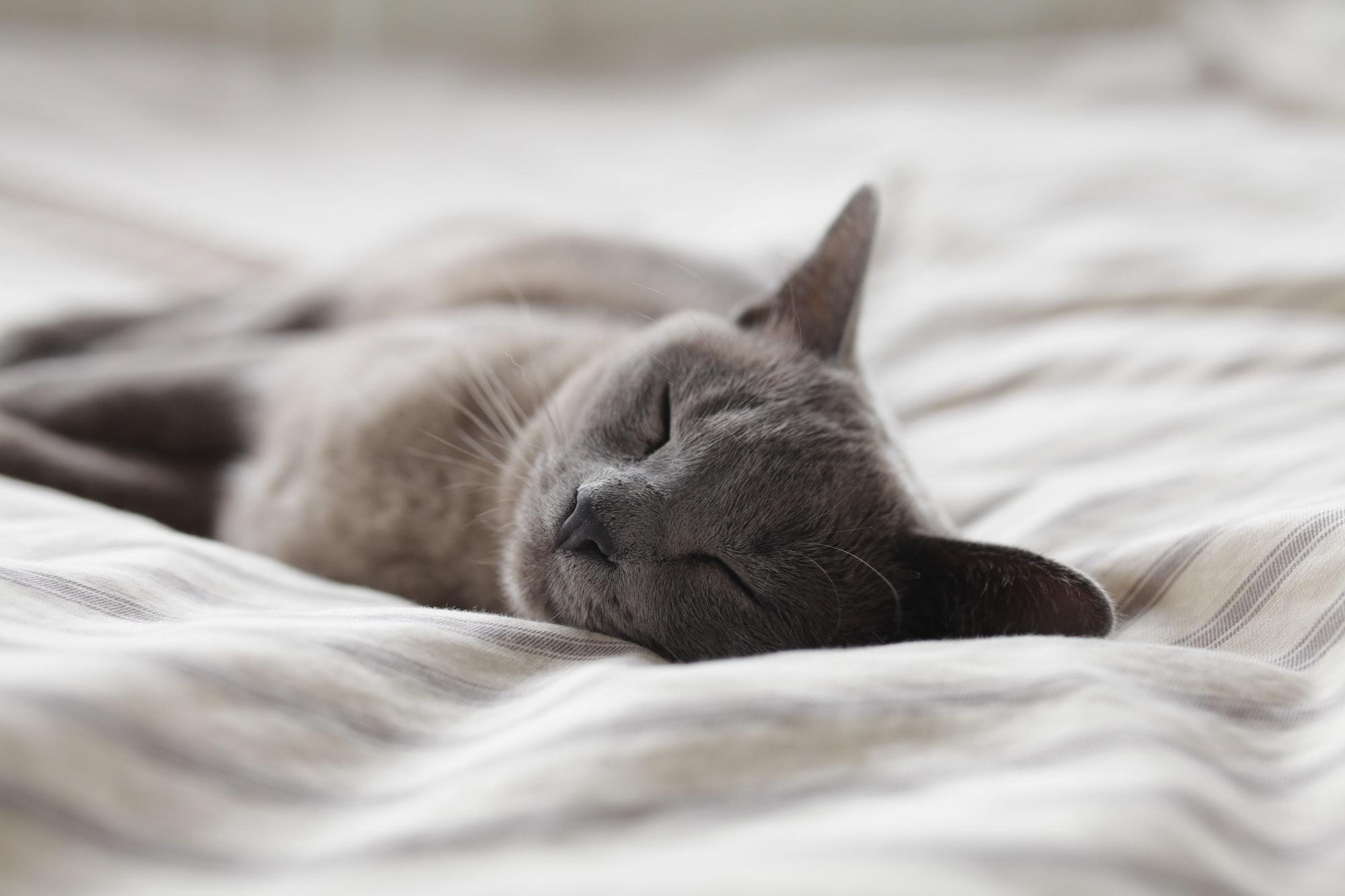 How to sleep on time