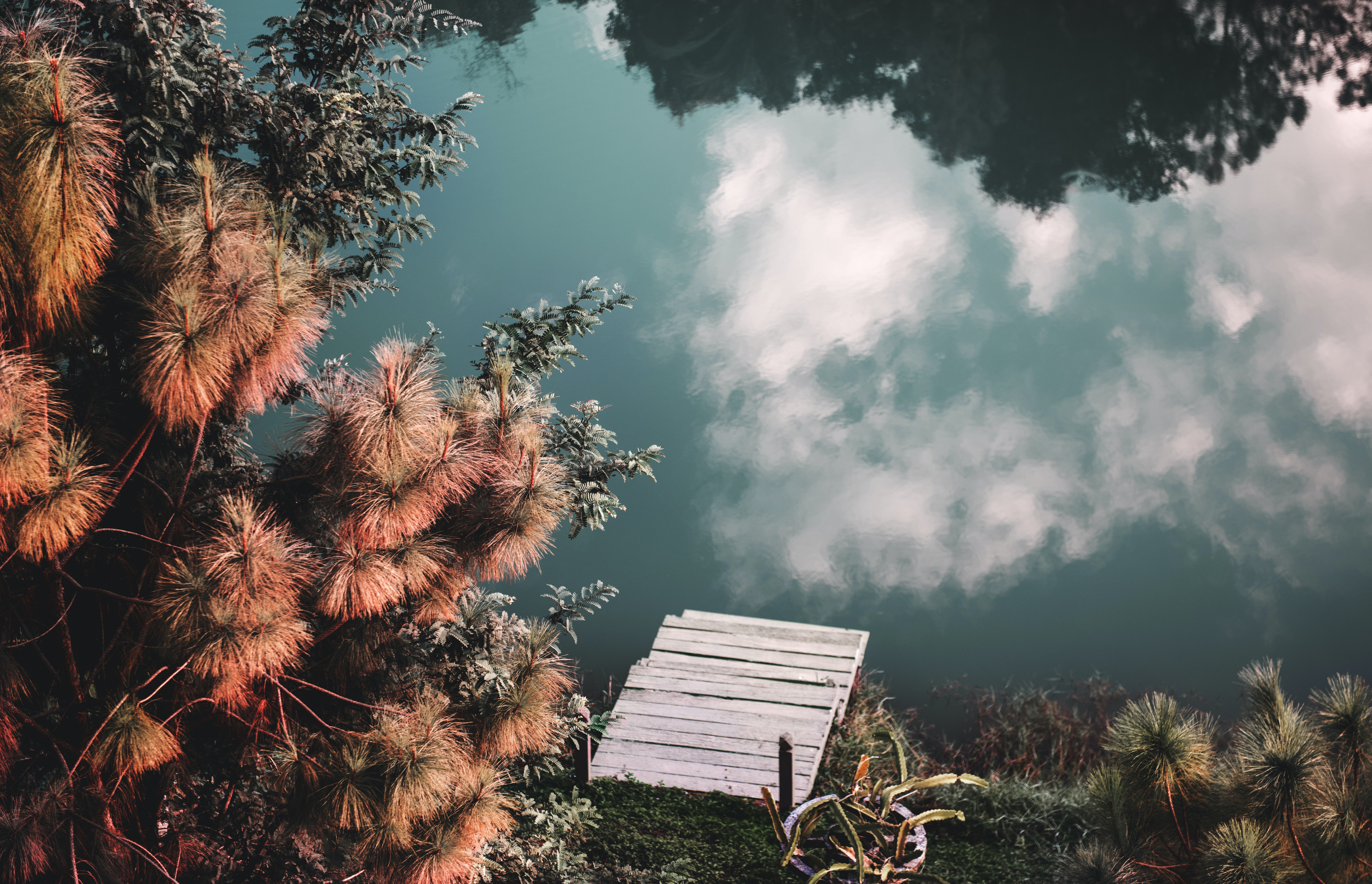 clouds reflecting on green body of water with white dock