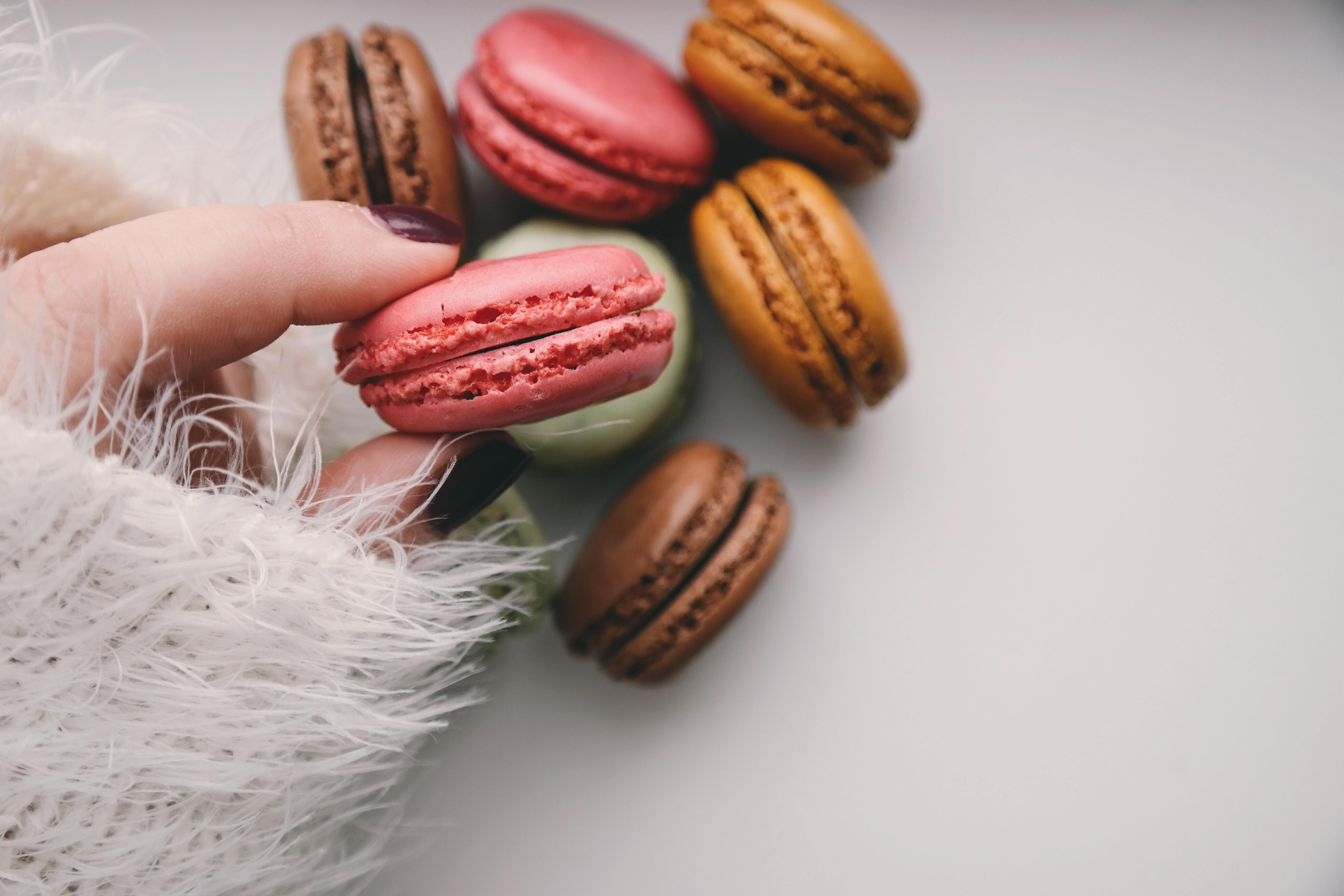 person holding french macarons