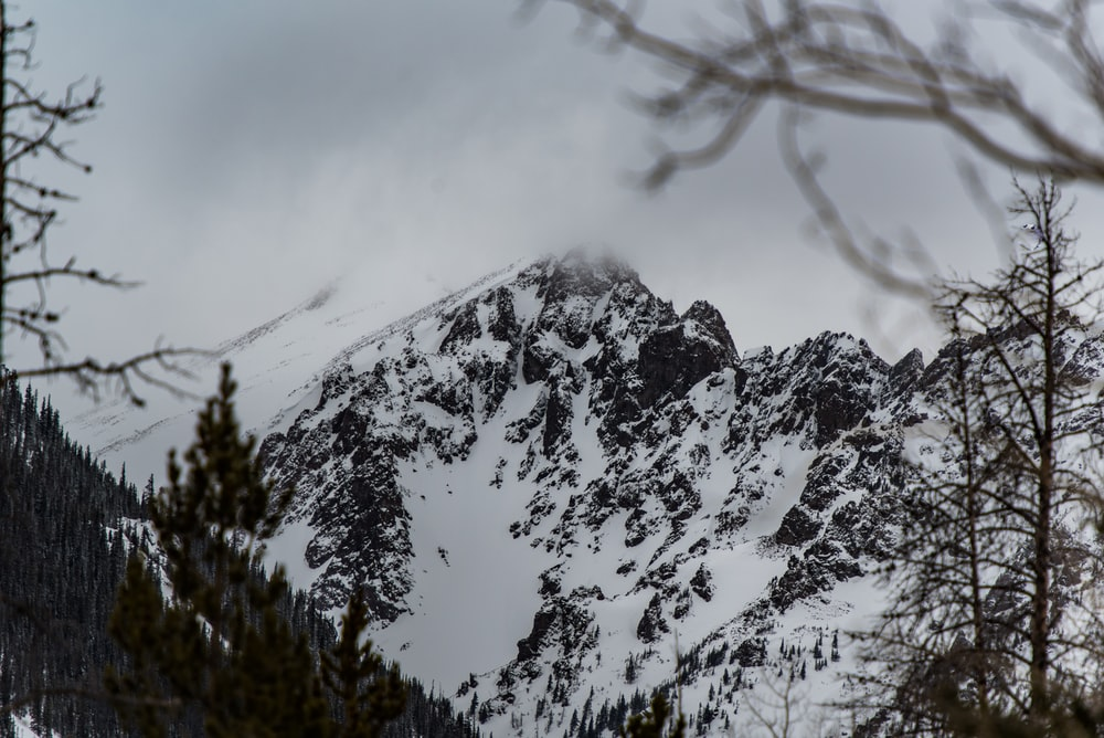 landscape of mountain covered with snow
