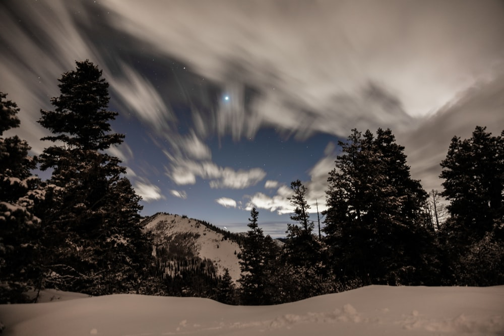 trees overlooking snow capped mountain in time lapse photography