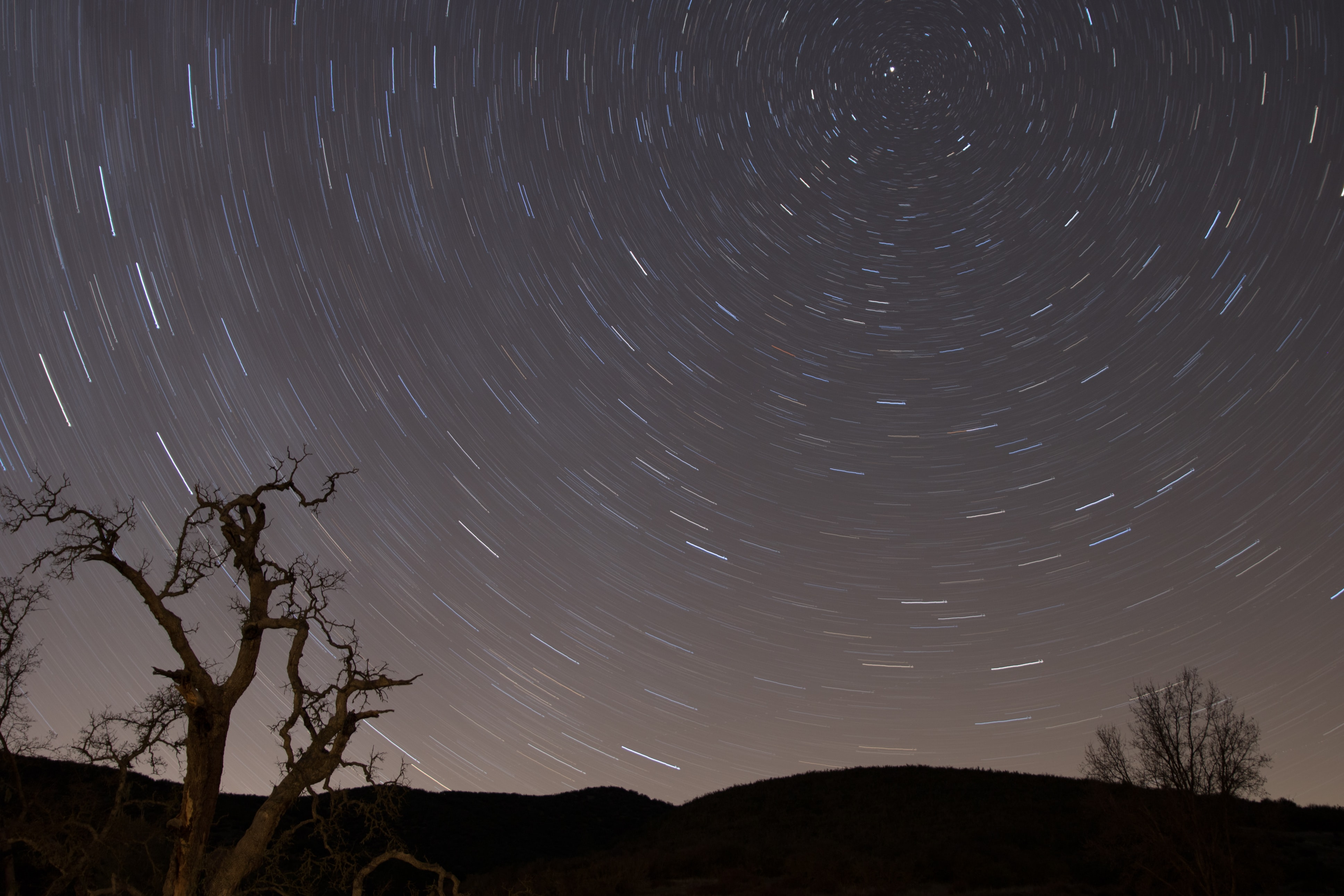 A long exposure shot of a star-filled night sky, featuring silhouette trees and hills