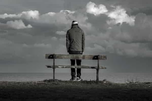 מחשבות על דינמיקות סכיזואידיות - ננסי מקוויליאמס