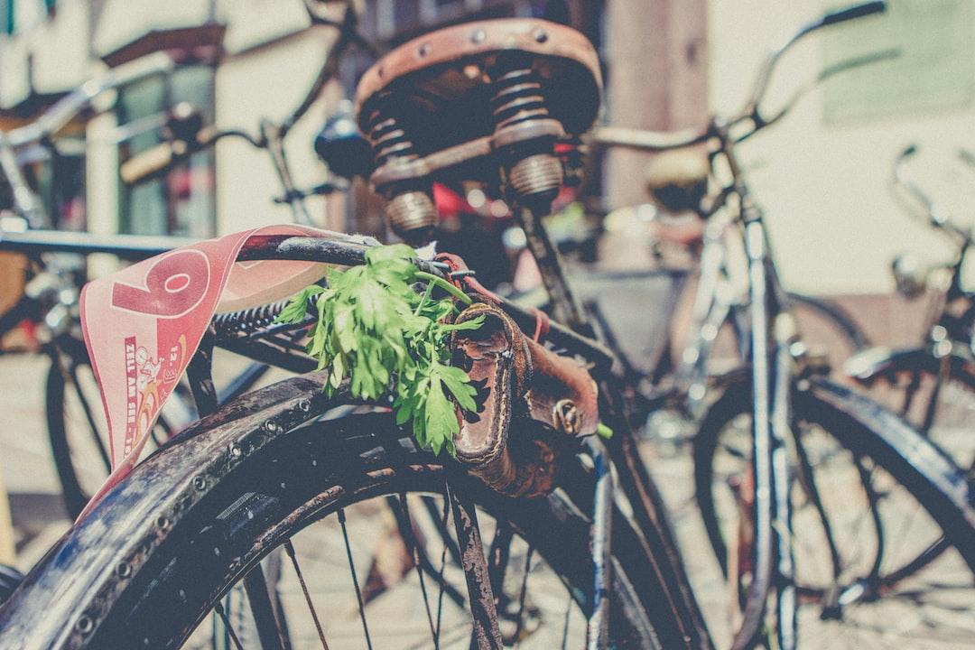 leaves in bag on bike