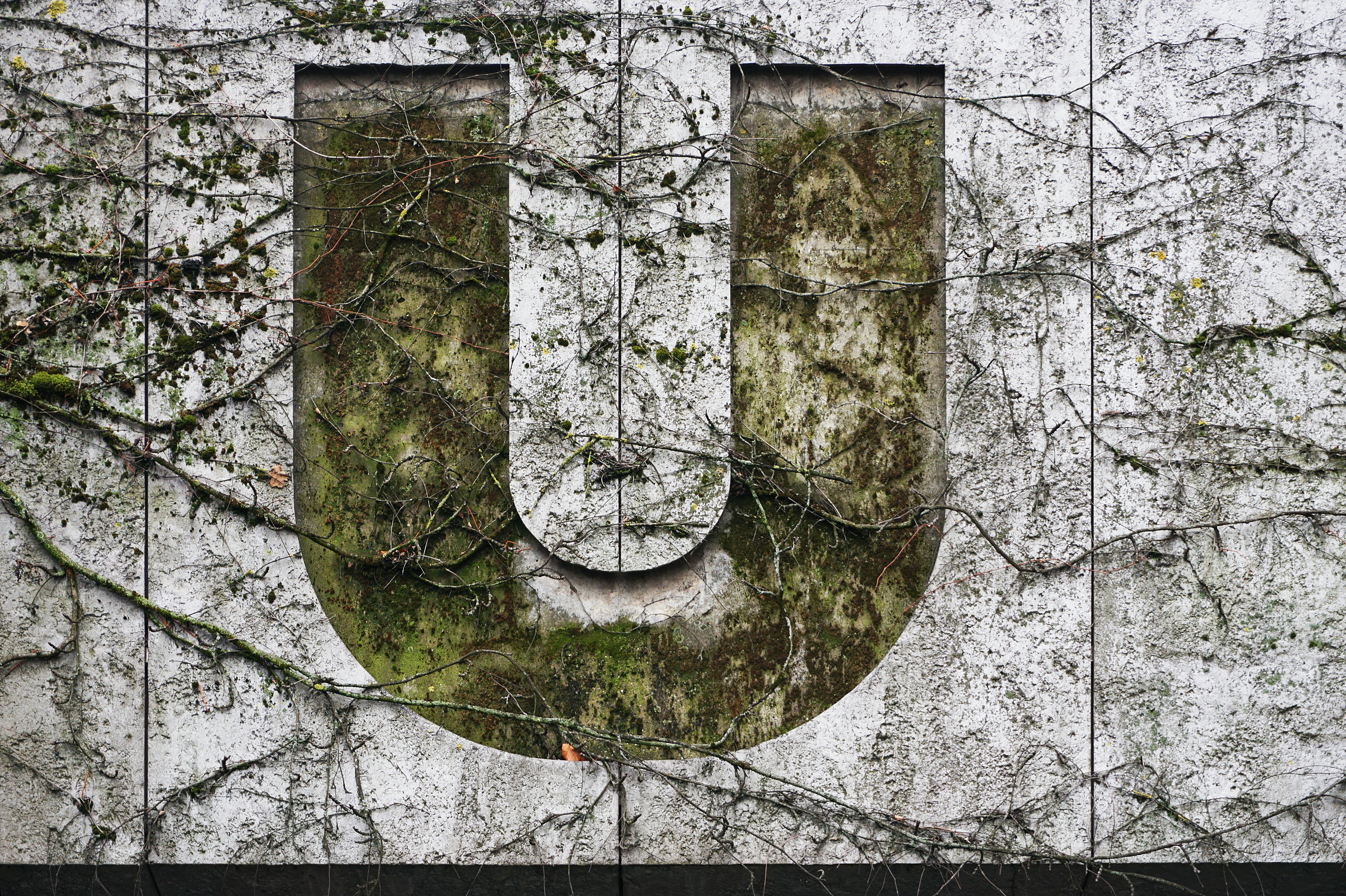 U logo on white painted wall