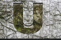 U logo on white painted wall
