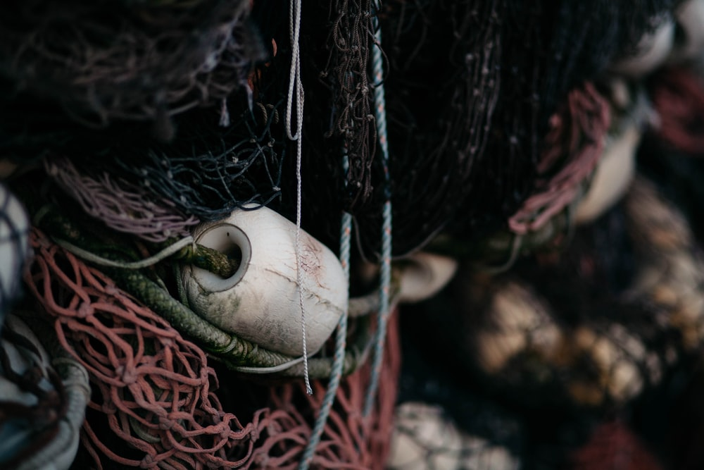 closeup photo of red and black fishing net