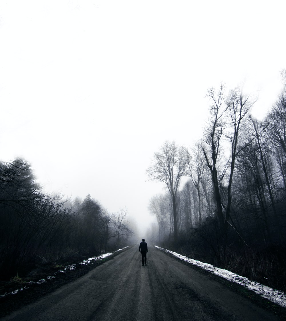 man walking on road surrounded by bare trees