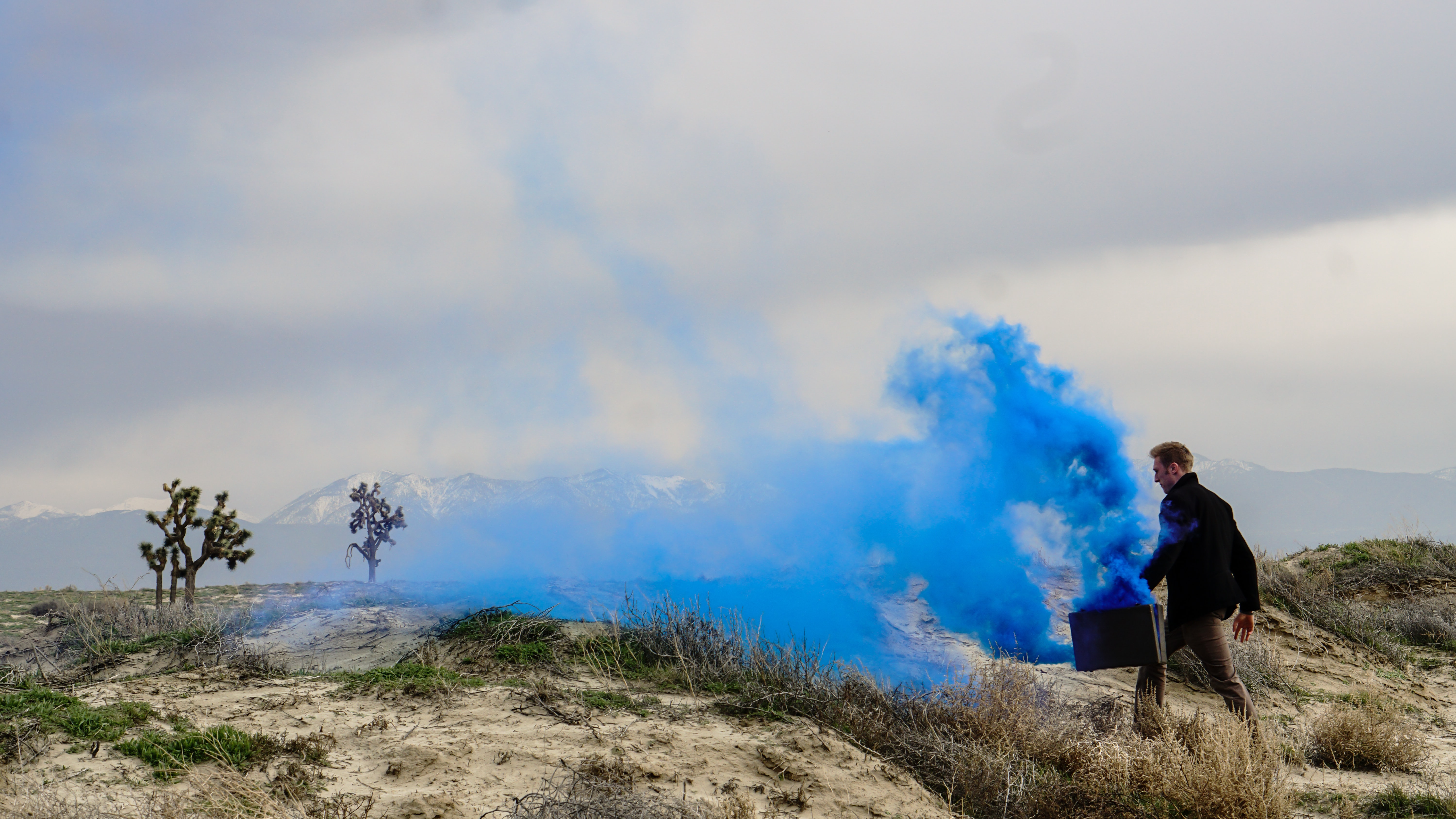 Thick blue smoke coming out of a suitcase carried by a man walking through the wilderness