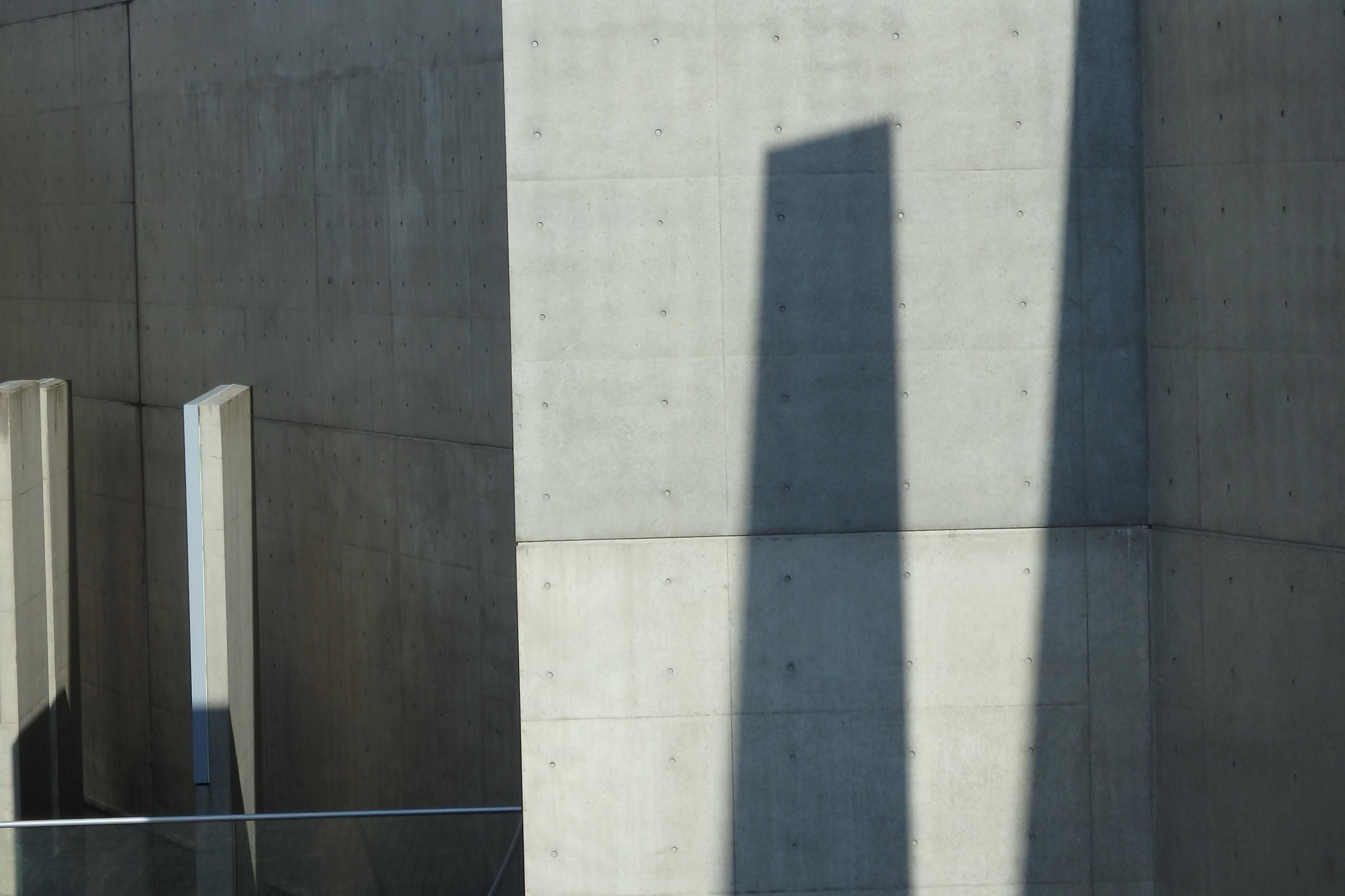 Long shadows on a concrete wall