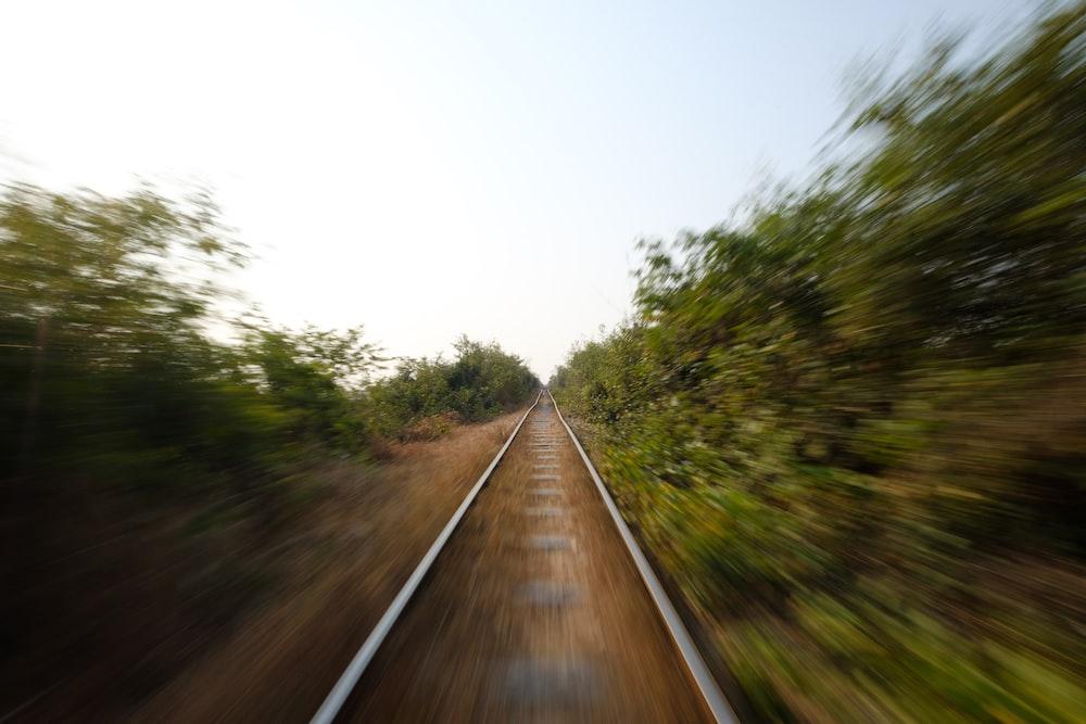 traintrail between foest
