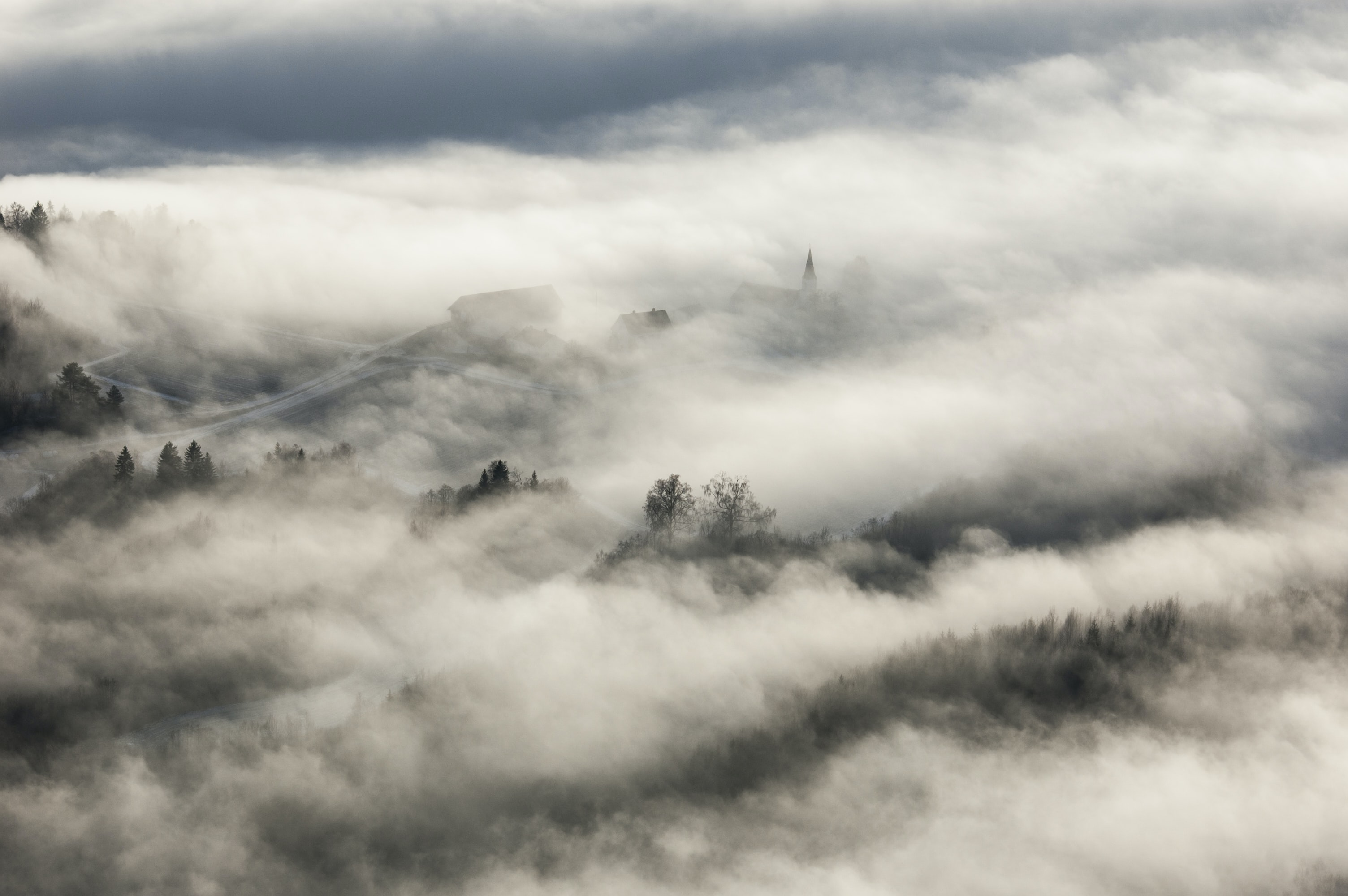 Village homes and town trees hidden by fog on a misty morning