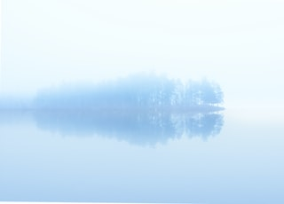 body of water across trees surrounded by fogs