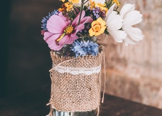 white and yellow petaled flowers in glass vase
