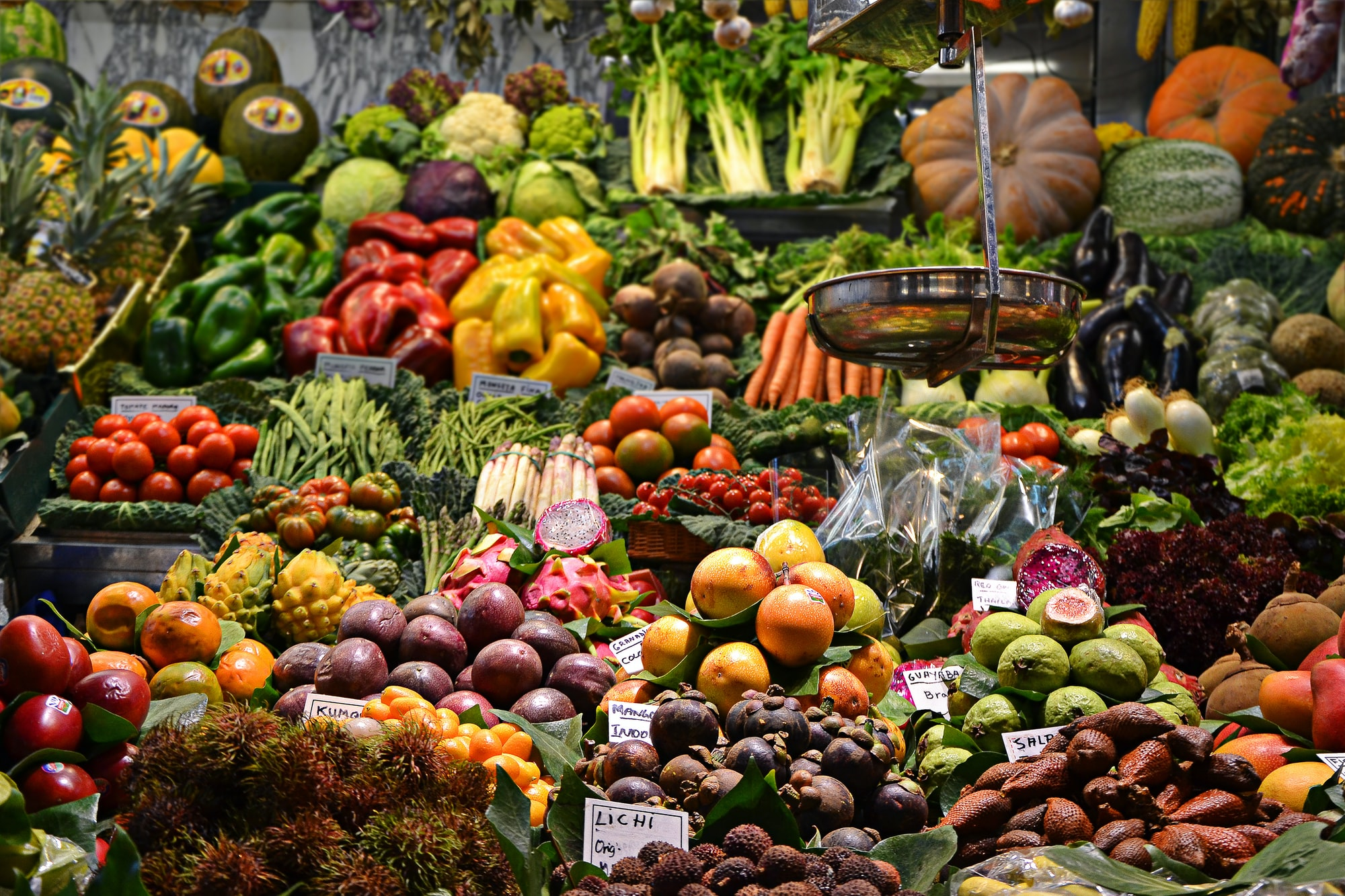 Food waste and processed foods