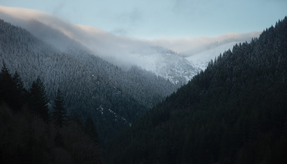 landscape photography of mountains during foggy season