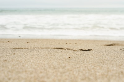 shallow focus photography of coast line sand zoom background